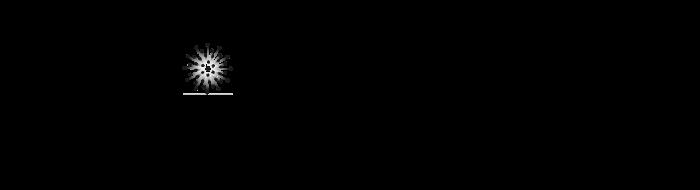 Black Logo CSMS