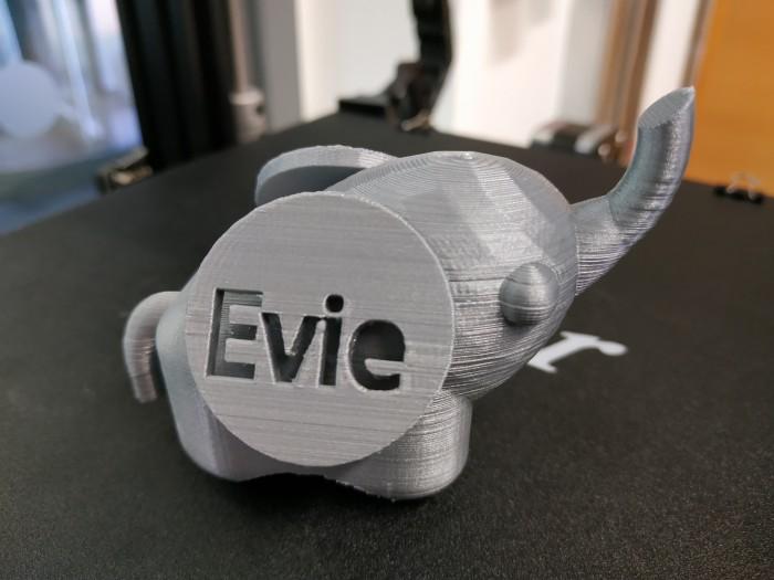 001_EveR_Elephant_02
