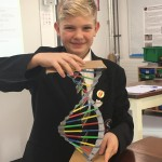 Max used colours to show how the bases pair up in DNA